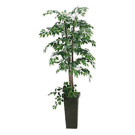 Realspace™ 7' Ficus Tree With Metal Planter, Black/Green
