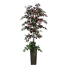 Realspace 7 Ficus Tree With Metal