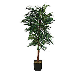 Realspace 6 Weeping Ficus Tree With