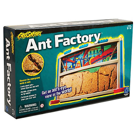 """Learning Resources® GeoSafari Ant Factory™, 9"""" x 15"""", Pre-K - Grade 12"""