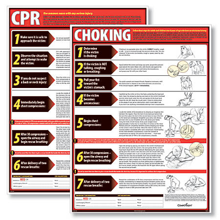 """ComplyRight CPR And Choking Poster Bundle, English, 18"""" x 24"""""""