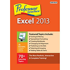 Professor Teaches Excel 2013