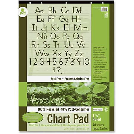 "Ecology Chart Pad, 1 1/2"" Ruled, 24"" x 32"", Pad Of 70 Sheets"