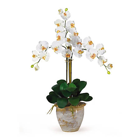 "Nearly Natural 27"" Triple Stem Orchid With Vase, Cream"