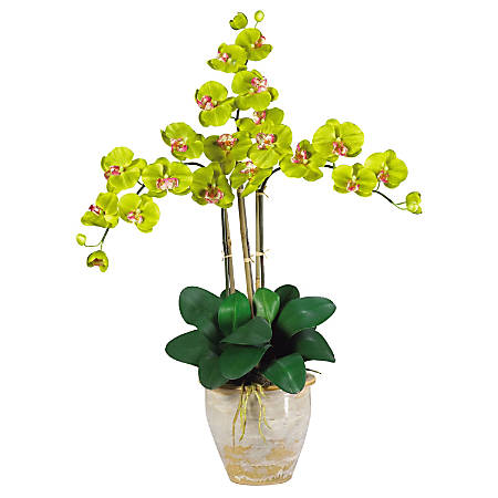 """Nearly Natural 27"""" Silk Triple Stem Phalaenopsis Orchid, Green"""