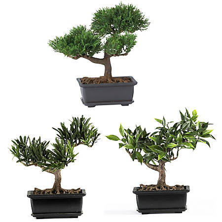 """Nearly Natural 8 1/2"""" Silk Bonsai Plant With Pot, 8 1/2""""H x 8 1/2""""W x 5""""D, Set of 3"""
