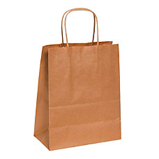 Partners Brand Paper Shopping Bags 10