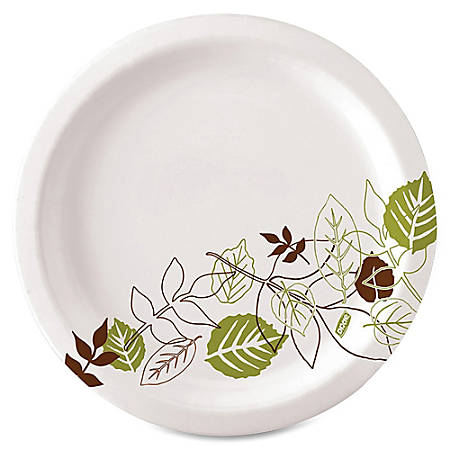 "Dixie® Paper Plates, 10"", Pathways, Carton Of 500 Plates"