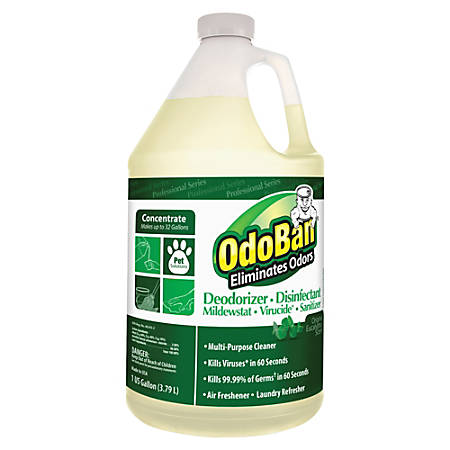 OdoBan® Multi-Purpose Deodorizer & Disinfectant Concentrate, Eucalyptus Scent, 1 Gallon