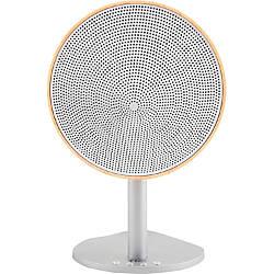 TIC Parasol BA1 21 Speaker System