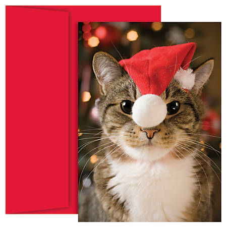 """Great Papers! Holiday Greeting Cards, 5 5/8"""" x 7 7/8"""", Festive Cat, Pack Of 18"""