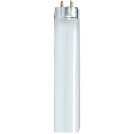 """Satco® 48"""" T8 Fluorescent Bulbs, 32 Watt, Carton Of 6"""