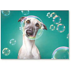 Viabella Blank Note Greeting Card Dog