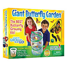 Insect Lore Giant Butterfly Garden Pre