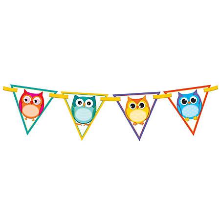 Carson-Dellosa Bunting, 7'' x 7'', Colorful Owls, Grades Pre-K - 12, Pack Of 16