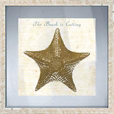 PTM Images Framed Art Starfish I