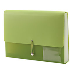 See Jane Work® Expanding File Case, 13 Pockets, Green