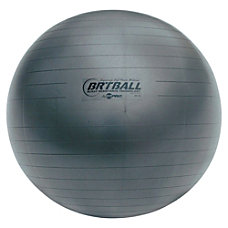 Champion Sports Gray TrainingExercise Ball