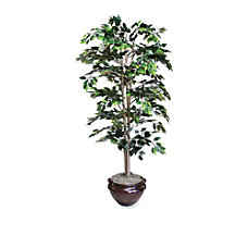 NuDell 6H Artificial Green Fichus Tree