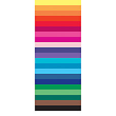 Pacon 20 x 30 Spectra Art