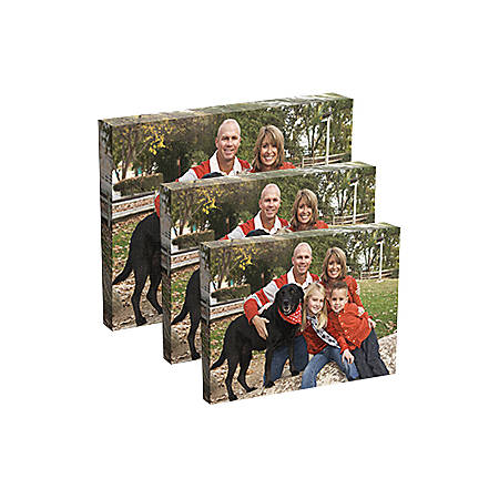 Custom Canvas Print 16 x 20 by Office Depot & OfficeMax