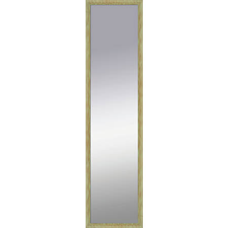 """PTM Images Framed Mirror, Shadowbox, 48""""H x 12""""W, Natural Green"""