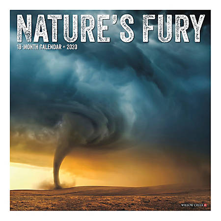"""Willow Creek Press Scenic Monthly Wall Calendar, 12"""" x 12"""", Nature's Fury, January To December 2020"""