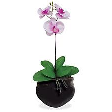 Glolite Nu dell NuDell Artificial Orchid