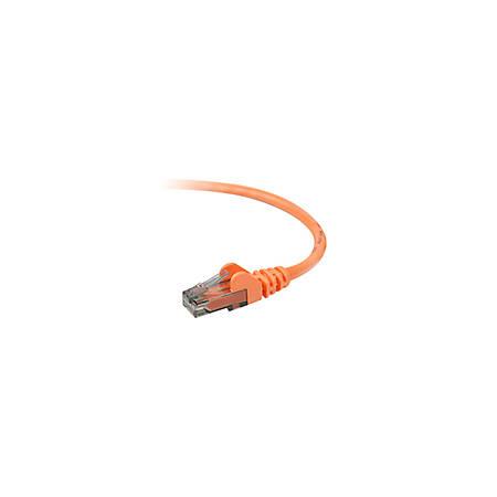 Belkin Cat.6 UTP Patch Cable - RJ-45 Male Network - RJ-45 Male Network - 5ft - Orange