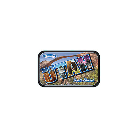 AmuseMints® Destination Mint Candy, Utah State, 0.56 Oz, Pack Of 24