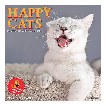 "Willow Creek Press Animals Monthly Wall Calendar, 12"" x 12"", Happy Cats, January To December 2020, 06603"