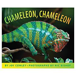 Scholastic Chameleon Chameleon