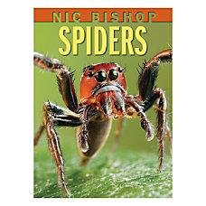 Scholastic Spiders