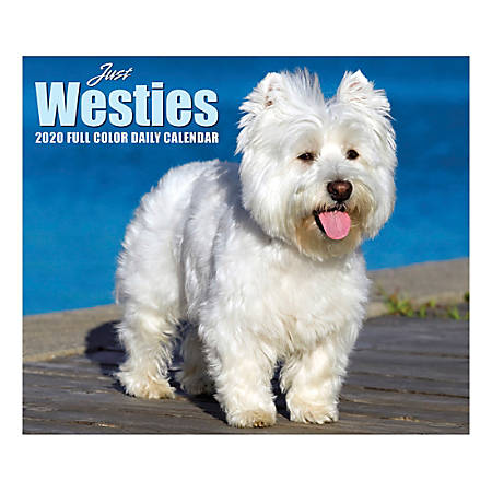 """Willow Creek Press Page-A-Day Daily Desk Calendar, Just Westies, 5-1/2"""" x 6-1/4"""", January to December 2020, 09000"""