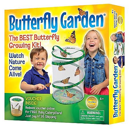 Insect Lore Butterfly Garden®, Pre-K - Grade 6