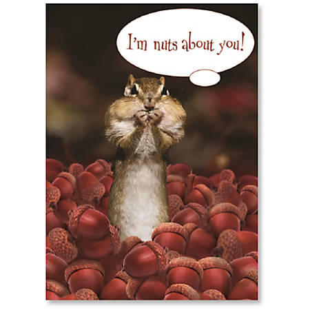 "Viabella Love Greeting Card, Nuts, 5"" x 7"", Multicolor"