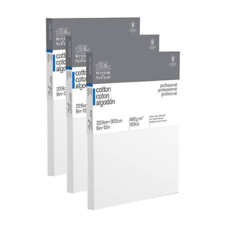 "Winsor & Newton Professional Cotton-Stretched Traditional Canvases, 12"" x 9"", White, Pack Of 3"