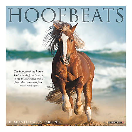 "Willow Creek Press Animals Monthly Wall Calendar, 12"" x 12"", Hoofbeats, January To December 2020"