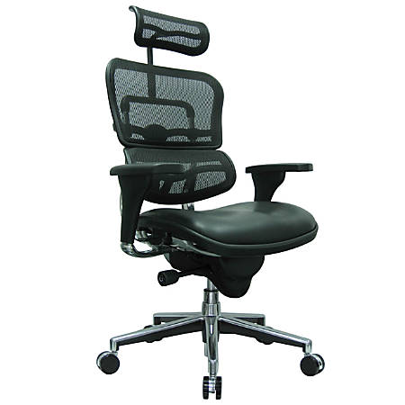"Raynor® Ergohuman High-Back Mesh/Leather Chair, 52""H x 26 1/2""W x 19""D, Chrome Frame, Black Leather Seat/Black Mesh Back"