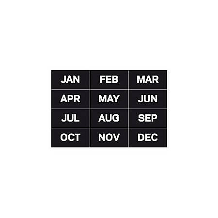 """MasterVision™ Magnetic Months Of The Year, 1"""" x 2"""", Set Of 12"""