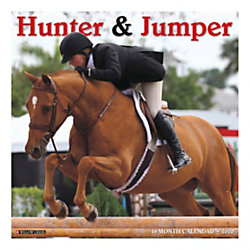 "Willow Creek Press Animals Monthly Wall Calendar, 12"" x 12"", Hunter & Jumper, January To December 2020"