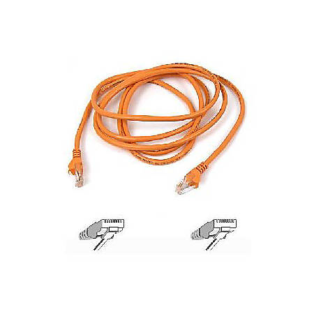 Cat Cable Solid Home Depot