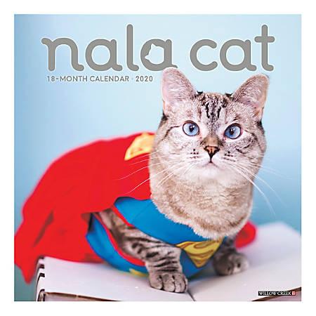 "Willow Creek Press Animals Monthly Wall Calendar, 12"" x 12"", Nala Cat, January To December 2020"