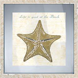 PTM Images Framed Art Starfish II
