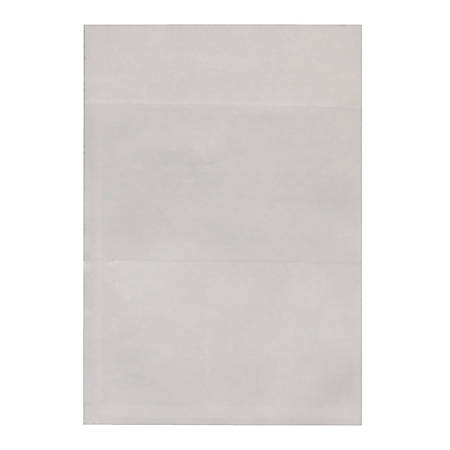 "Ashley Library Pockets, 3 1/2"" x 5"", Clear, Pack Of 125"