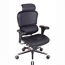 Eurotech Ergohuman High Back Leather Chair