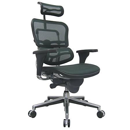 Raynor Eurotech Ergohuman Mesh High Back Chair Black Chrome Item 424338