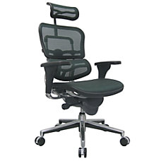 Raynor Ergohuman High Back Mesh Chair