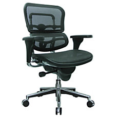 Raynor Ergohuman Mid Back Mesh Chair