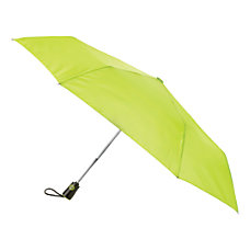 Raines Auto OpenClose Umbrella